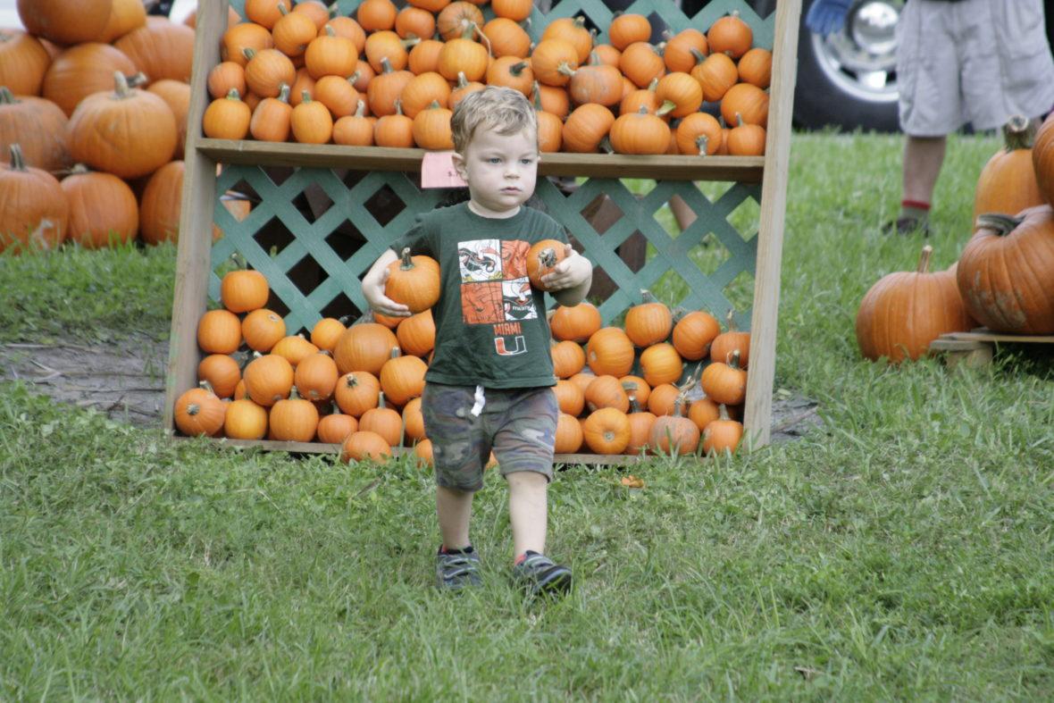 Pumpkin Patch 2106 Day 172
